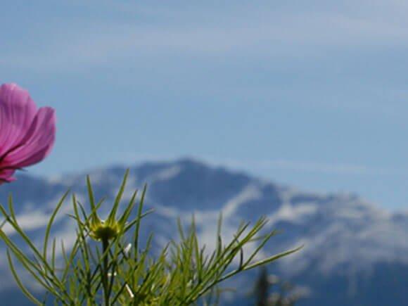Urlaub in Vacanze in Alto Adige